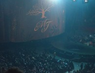 THE IMMORTAL WORLD TOUR
