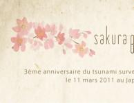 Exposition Sakura Blossom