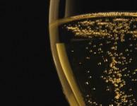 Les Champagnes de Vignerons 2014