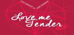 Love Me Fender H & H